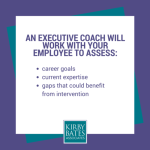 Exec Coach Graphic describing career goals, expertise and career gaps.